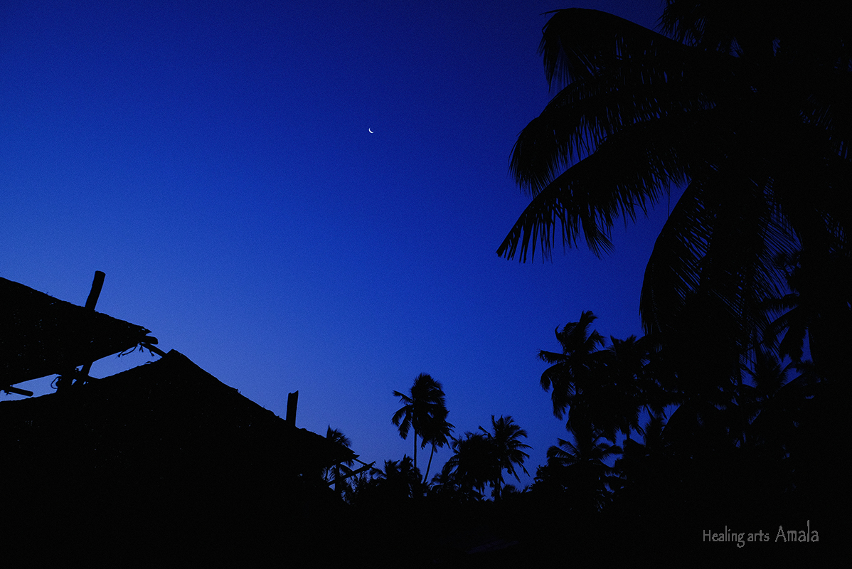 夜明けのゴア